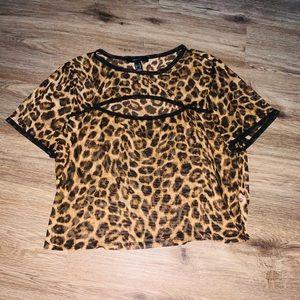 Sheer Cheetah Print Crop